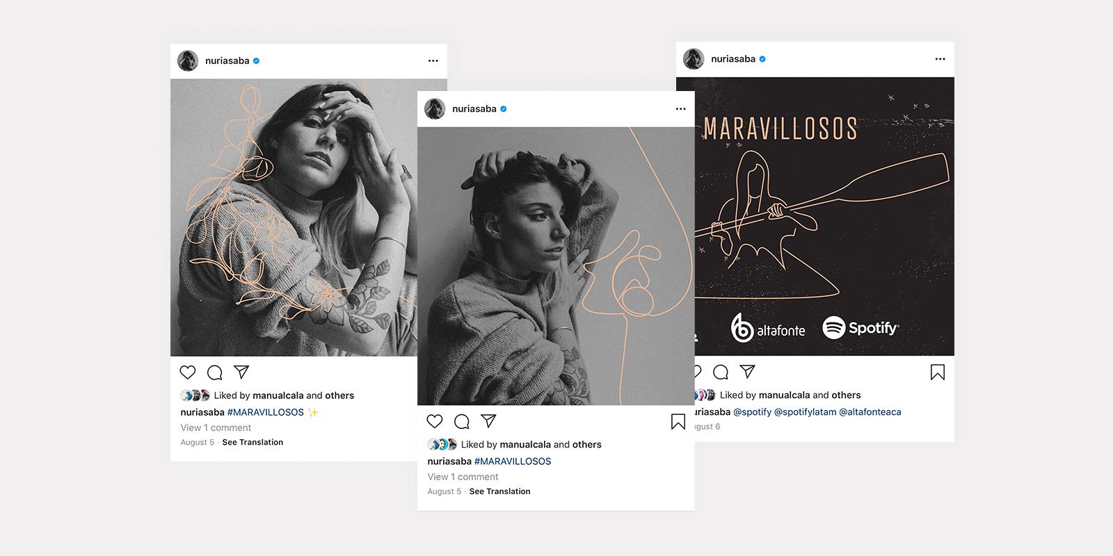 instagram screenshots of posts